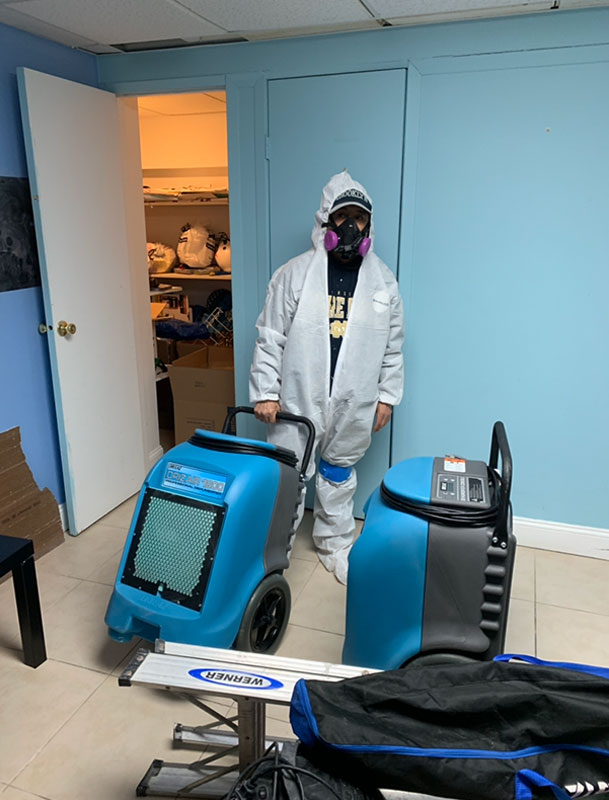 Mold Cleaning Person