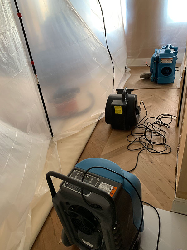Mold Services 5