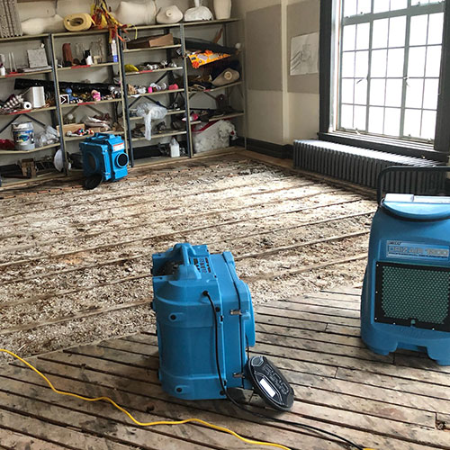 Mold Removal by SFMS